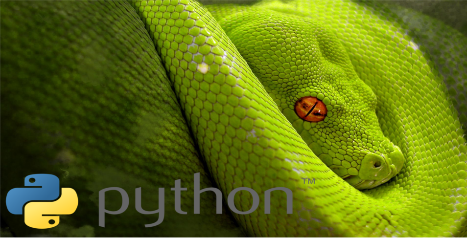 Projects pdf python